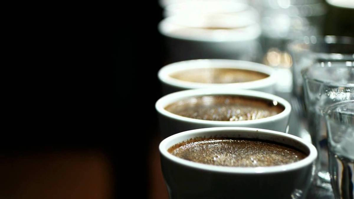 A Beginner's Guide to CoffeeTasting
